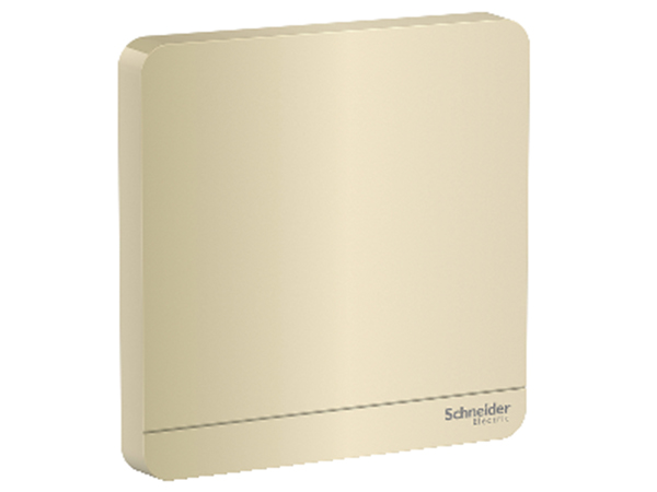 AvatarOn Series Switches and Sockets - 1G Blank Plate, Gold